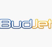 budjet-flyg-hotell-resor