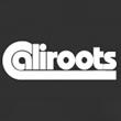 caliroots-kläder-märken-billigt